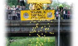 Duck Race Thame