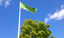 VL Aylesbury green flag tidy