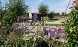 vl Lindengate gardens (2)