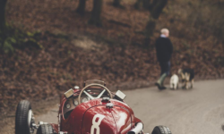 Amy Shore's picture of a classic racer