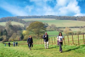 Chilterns Walking Festival @ Various