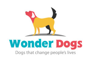 Meet the Wonder Dogs @ Bucks County Museum