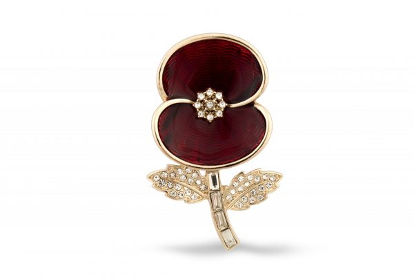 The commemorative brooch