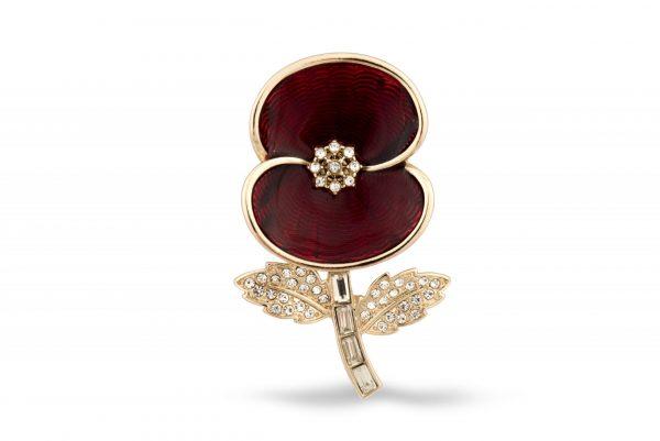 The commemorative brooch