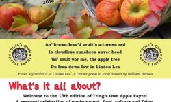 Tring Apple Fest brochure