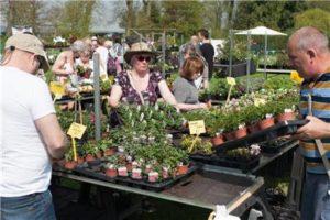 Mentmore plant sale @ Mentmore village green