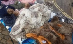 Aylesbury Market anti-fur