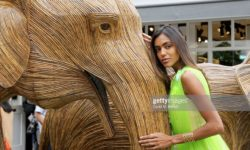 BICESTER, ENGLAND - MAY 17: Fernanda Marques attends a colourful celebration of All Things India at Bicester Village on May 17, 2019 in Bicester, England. (Photo by David M. Benett/Dave Benett/Getty Images for Value Retail Management (Bicester Village) Ltd)