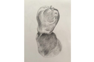 Beginners' Drawing - short course @ Queens Park Arts Centre