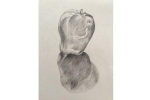 Adult Art Short-Courses at Queens Park Arts Centre: Further Drawing @ Queens Park Arts Centre