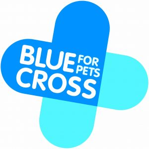 Blue Cross Lewknor Christmas Cracker @ Blue Cross Rehoming Centre Lewknor