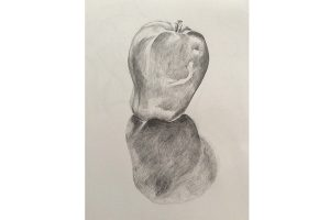 Adult Art Short-courses: Beginners' Drawing @ Queens Park Arts Centre