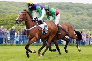 Kingston Blount Racing Club Point-to-Point Horse Races @ Kingston Blount Racecourse