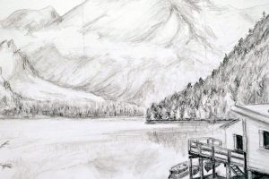 Beginners Drawing - Part 2: 28 Feb, 6, 13 March @ Queens Park Arts Centre